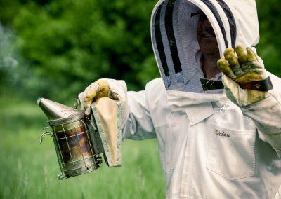 apiculture_img-07